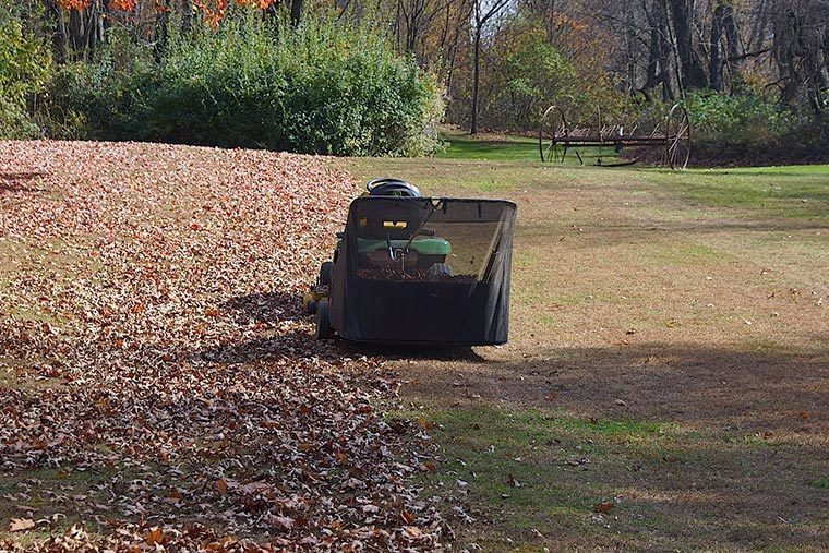 Lawn sweepers can do wonders.