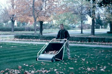 Push Lawn Sweeper